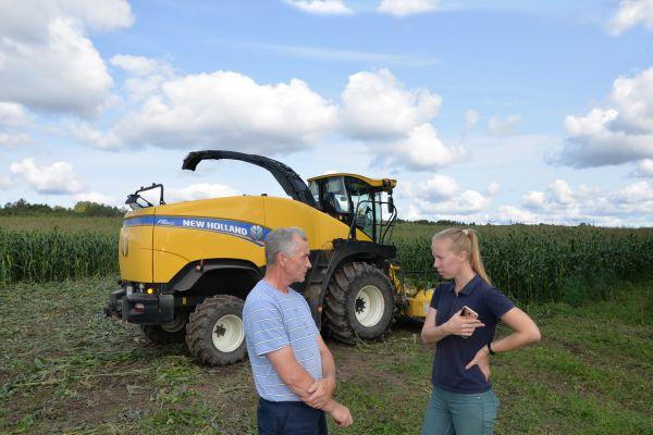 Андрей Гребенкин и Анастасия Павлова обсуждают ход уборки кукурузы