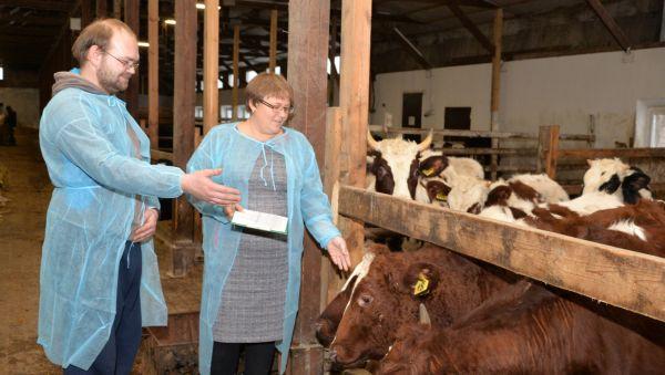 Вадим Зырин и Анастасия Кислицина проводят осмотр животных на ферме