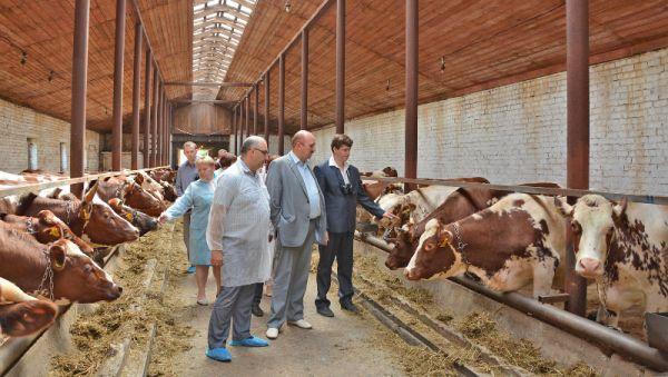 На семинарах, проходивших в «Левочском», Виктор Боченков (крайний справа) делился опытом применения компьютерных программ в животноводстве