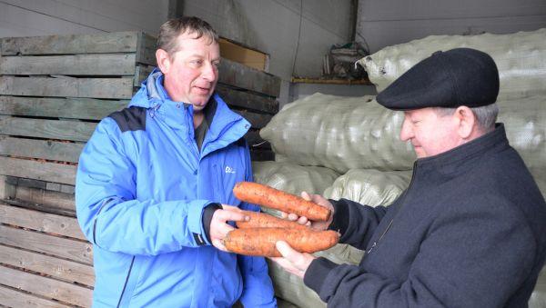 В ближайших планах Хабировых установить в овощехранилище линию по выпуску овощных салатов в вакуумной упаковке