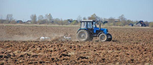 Практически во всех районах области сформированы списки неиспользуемых земель для участия в программе «Новгородский гектар»