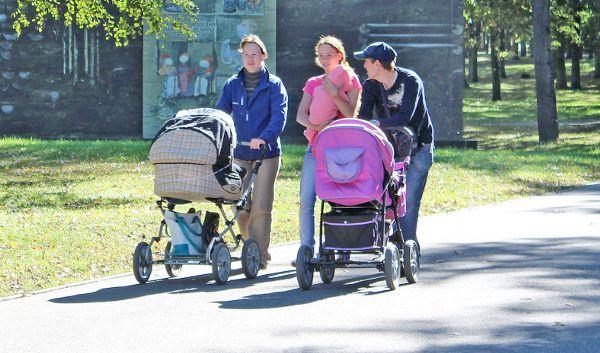 Важными на сегодняшний день являются два вопроса: стимулирование рождаемости и снижение уровня бедности