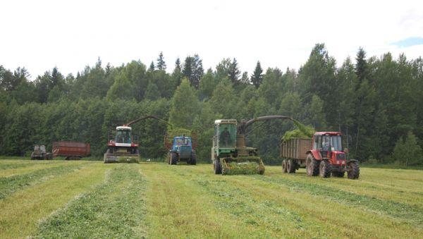 Хорошая оснащённость техникой, передовые технологии позволяют СПК «Левочский» заготавливать необходимое количество кормов, обеспечивать их высокое качество