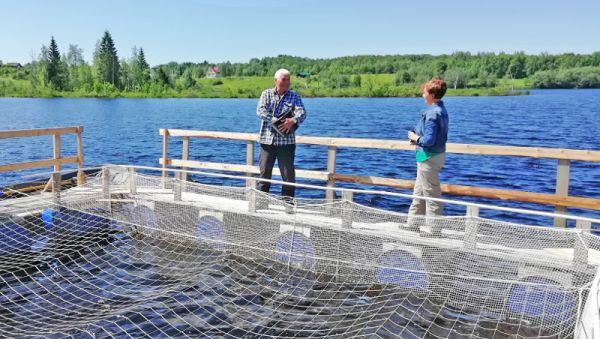 Проект по выращиванию рыбы в нагульных садках на озере Сахарное стал первым в Любытинском районе