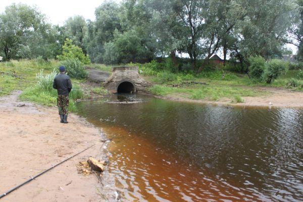 Что несут ручьи в старорусские реки — ни один эколог не скажет. Не проверяли и не собираются. А смысл, спрашивают?