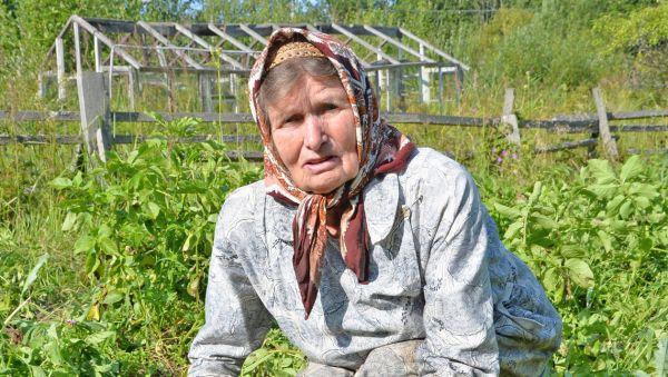 Анастасия Семёнова: «Работаешь-работаешь, а кабаны урожай губят»
