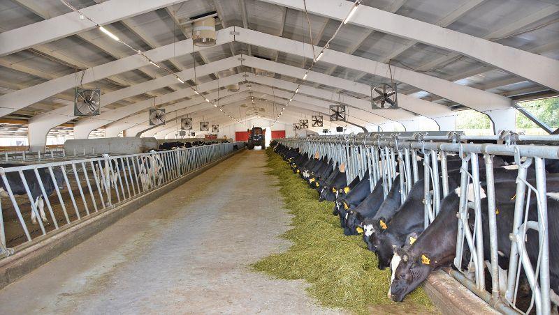 Анализ деятельности сельхозпредприятия покажет скрытые возможности к развитию