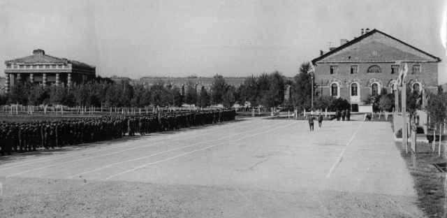 Раньше на плацу гарнизона в селе Медведь строились солдаты, а теперь там «маршируют» деревья
