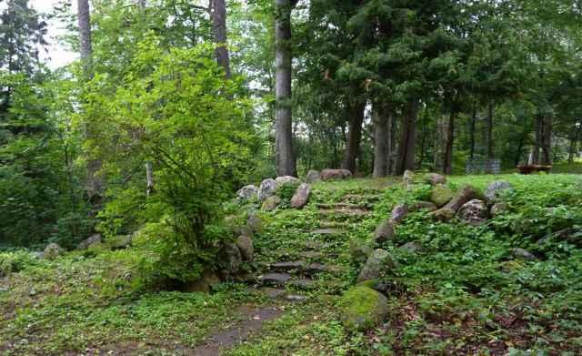 Туристы специально приезжают в Выбити, чтобы прогуляться по аллеям парка, услышать «дыхание» вековых деревьев.