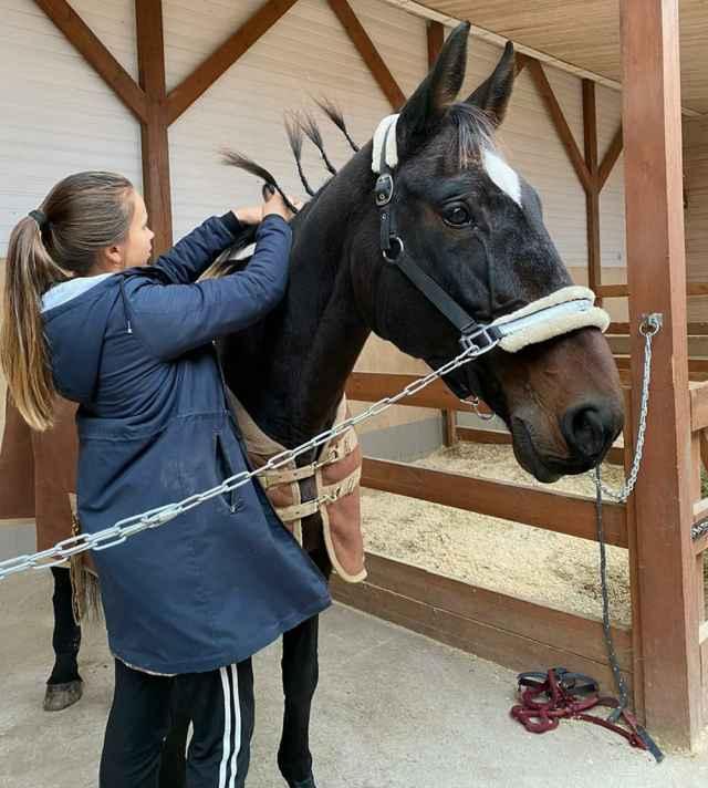 В Шимском КСК лошадей ученицам подбирают в зависимости от стажа наездницы.