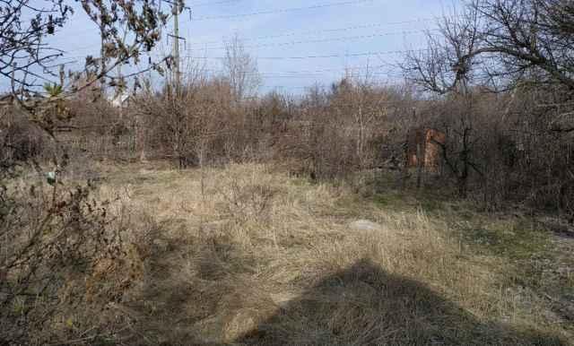 Бесхозных участков в садовых товариществах близ Великого Новгорода много. Некоторые владельцы даже и не подозревают, что у них есть земля.