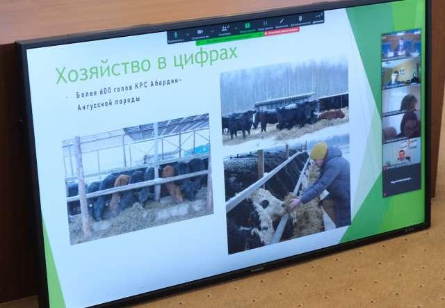 Сельскохозяйственный кооператив «БИФ» объединяет 28 фермерских хозяйств из Батецкого, Новгородского и Шимского районов. Они занимаются молочным и мясным животноводством.