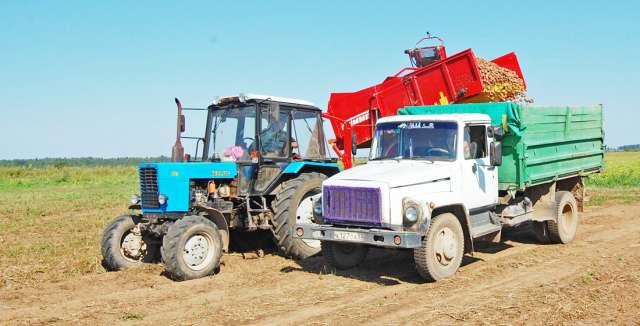 Аграрии региона вырастили в прошлом году 181 тысячу тонн картофеля.
