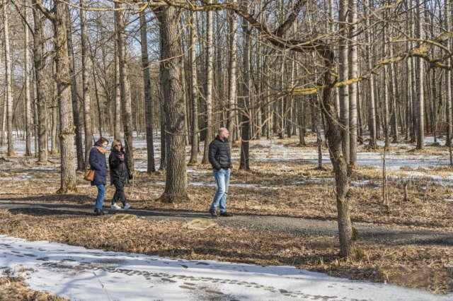 По парку и сейчас приятно прогуляться. А если реализовать проект благоустройства (нижнее изображение), то проводить время в «Заверяжье» будут не только жители Борков.