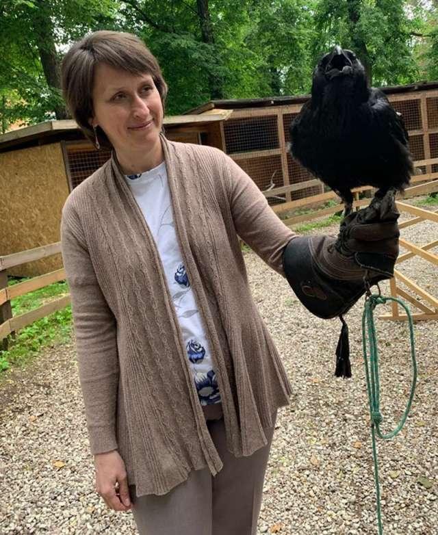 Волонтёры соколиного двора очень надеются, что обучение позволит привить новгородцам грамотное отношение к крылатым хищникам.