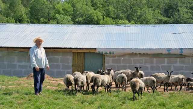 Как только здоровье главы семьи позволит, он снова начнёт заниматься фермерством.