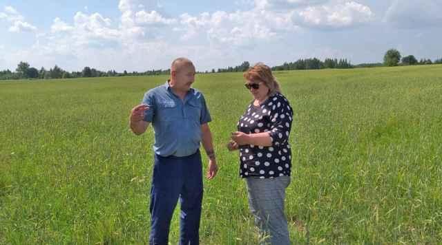 Олег Юхнов делится своими расчётами по выращиванию зерна с Еленой Покровской, руководителем регионального министерства сельского хозяйства.