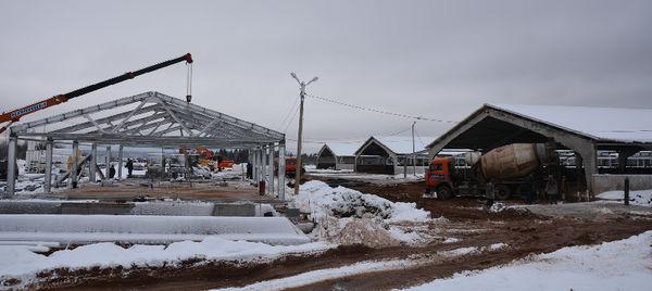 По плану строительство молочного комплекса должно быть завершено в первом квартале 2018 года