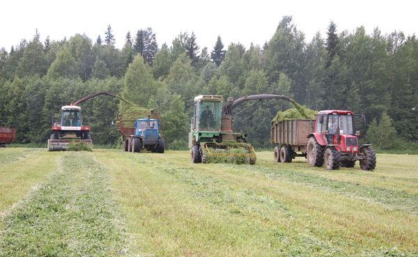 Свои средства и помощь государства позволяют СПК «Левочский» успешно вести заготовку кормов и другие сезонные полевые работы