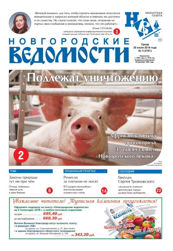 Выпуск газеты «Новгородские Ведомости» от 25.07.2018 года