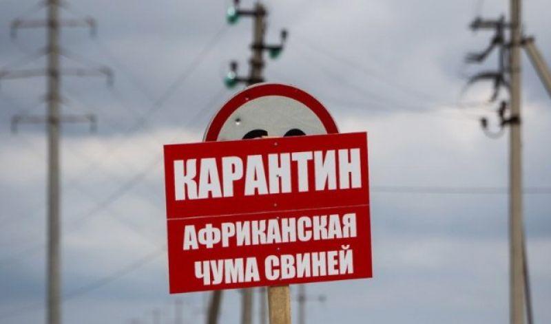 Карантин действует на территории двух сельских поселений.