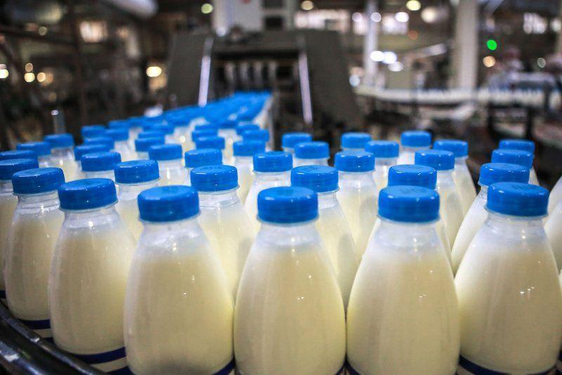 Руководители молочных хозяйств предлагают дифференцировано подходить к определению величин стимулирующих выплат.