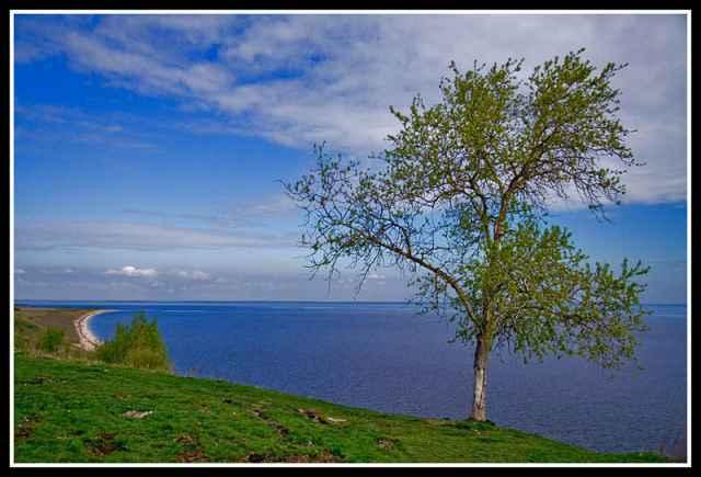 Коростынь - одно из любимых мест для отдыха на Ильмене среди новгородцев