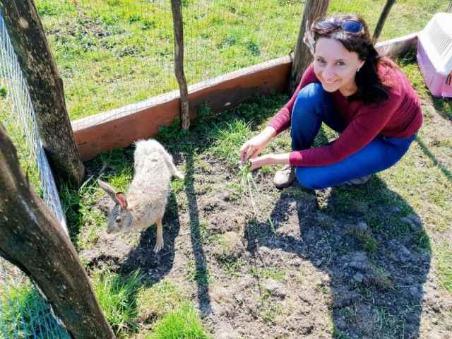 Заяц у Елены Степановой появился два года назад.