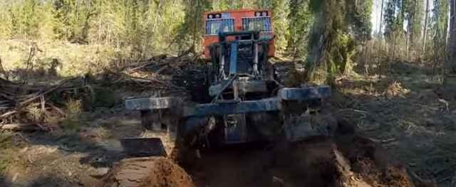 В прошлом году на Валдае от урагана серьёзно пострадала территория экспериментального гидрологического полигона «Лог таёжный».