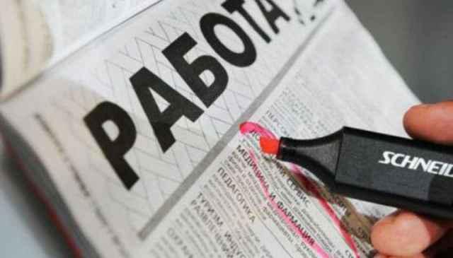 С начала года работодатели подали в Центр занятости населения Новгородской области более 8,5 тыс. вакансий.