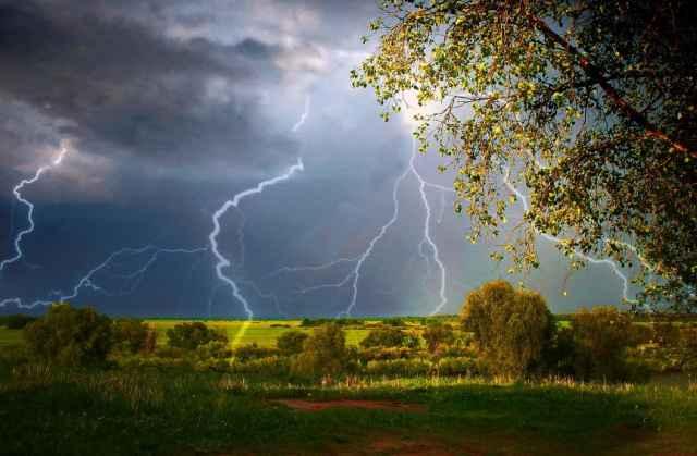 В воскресенье, 7 мая, метеорологи прогнозируют потепление до 25 градусов со знаком плюс на всей территории области