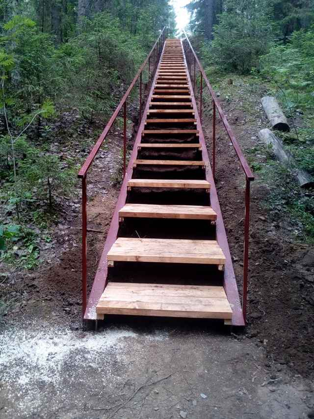 На экотропе «Лесные тайны» национального парка «Валдайский» появилась новая лестница.