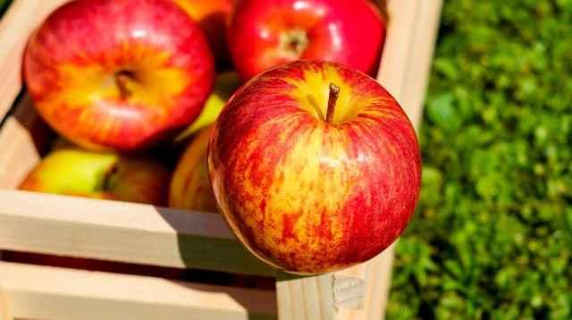 В день Преображения Господня на Руси было принято освящать в храмах яблоки.