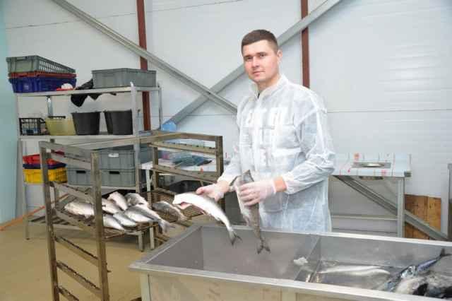 Максим Пиреев планирует в конце сентября пустить в работу новый цех по переработке рыбы.
