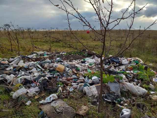 Администрацию Тёсово-Нетыльского поселения оштрафовали на 250 тысяч рублей за свалку