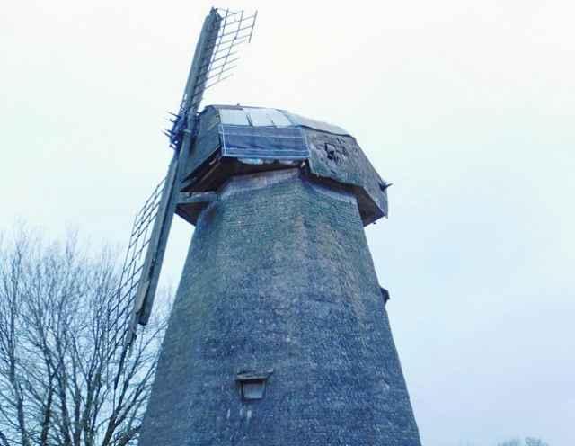 В 2020 году ветряная мельница деревни Завал наряду с пролетарским фарфором вошла в число территориальных брендов Новгородской области