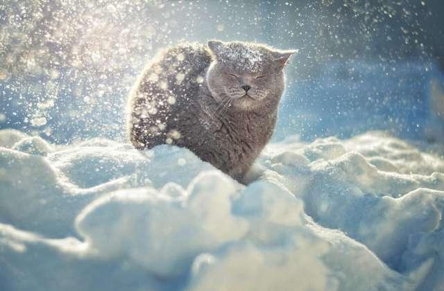 Снег в европейской части России останется до второй половины марта несмотря на оттепель.