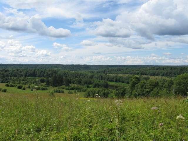 Памятник природы получил статус особо охраняемой природной территории ещё в 1987 году, в 1989 году его охранный статус был подтвержден на областном уровне