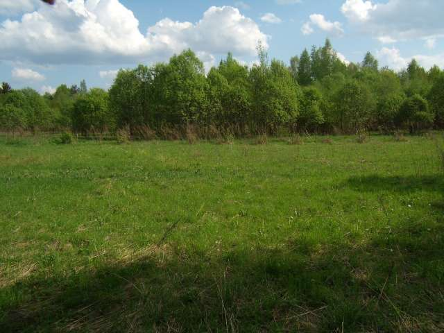 По областной программе фермер может получить в безвозмездное пользование земельный участок площадью до 200 га