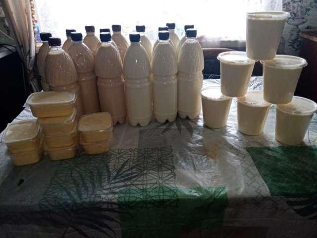 Дрегельское молоко покупают не только в Любытинском районе, но и в Ленинградской области – в Тихвине и Бокситогорске.