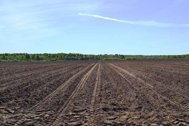 Использование земельных участков по программе «Новгородский гектар» также даёт возможность претендентам на грант «Агростартап» получить дополнительные баллы для участия в конкурсе