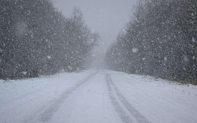 В Новгородской области ожидается усиление ветра, метель и снежные заносы.