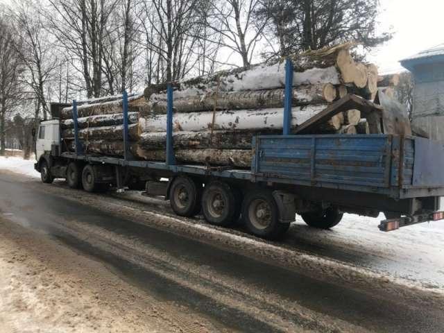 Похищенную древесину полицейские изъяли и вернули владельцу.