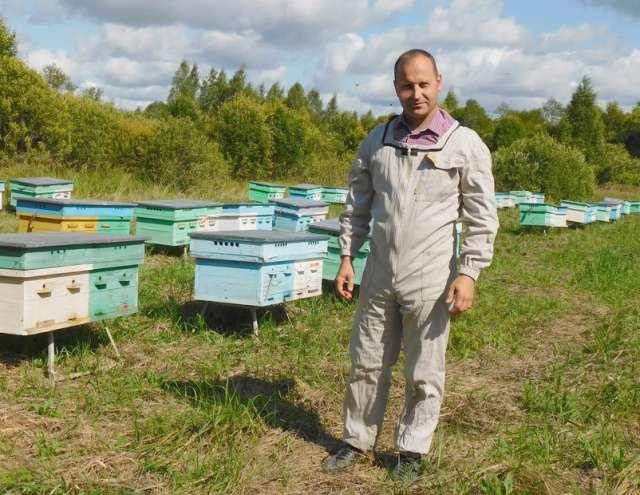 В хозяйстве агрария порядка 200 пчелосемей.