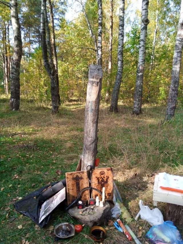 Вандалы распилили чур Велеса и сожгли его.