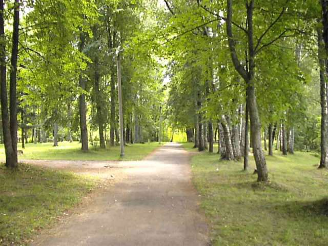 Среди претендентов на благоустройство в Холме городской парк.