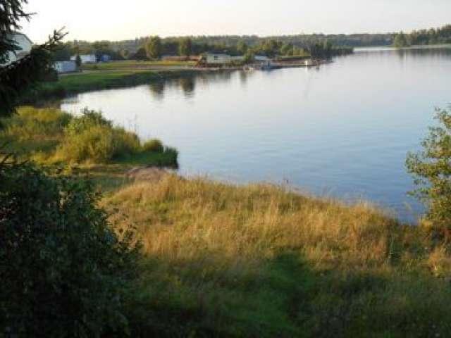 Рыбоводы Новгородской области за первые три месяца 2021 года вырастили 314 тонн товарной рыбы