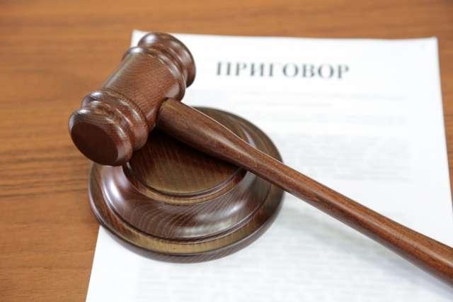 Новгородка признала свою вину частично.