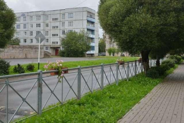 В 2018 годуЧудово стало лауреатом конкурса «Лучшая муниципальная практика» и получило более 1,5 млн рублей. Их направили на благоустройство города.