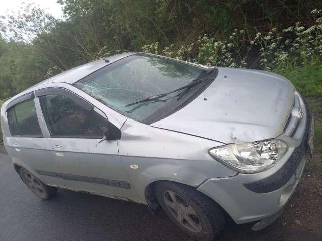 В результате ДТП животное погибло, водитель не пострадал, машина получила повреждения.